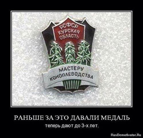 Конопля о русский томаты семена для гидропоники